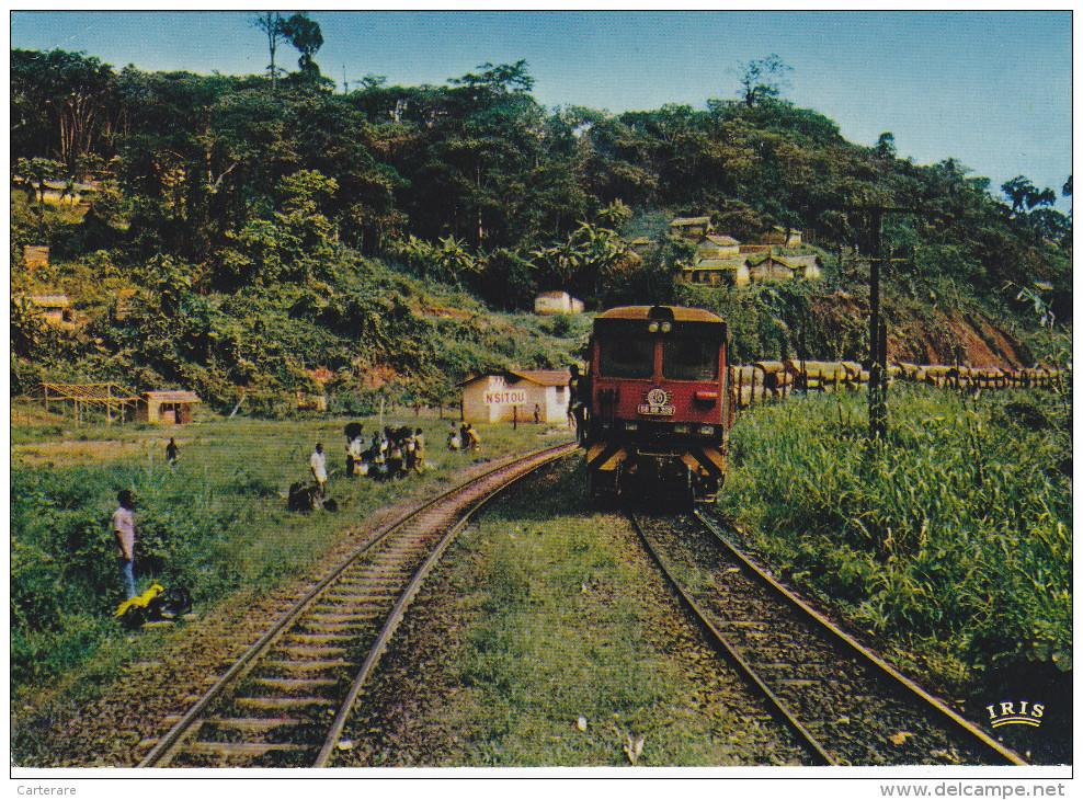 Afrique,CONGO,CFCO,transport  De Grumes,prés équateur,gabon,cameroun,N ´SITOU,train,wagons  De Grumes,troncs D´arbres,r - Congo - Brazzaville