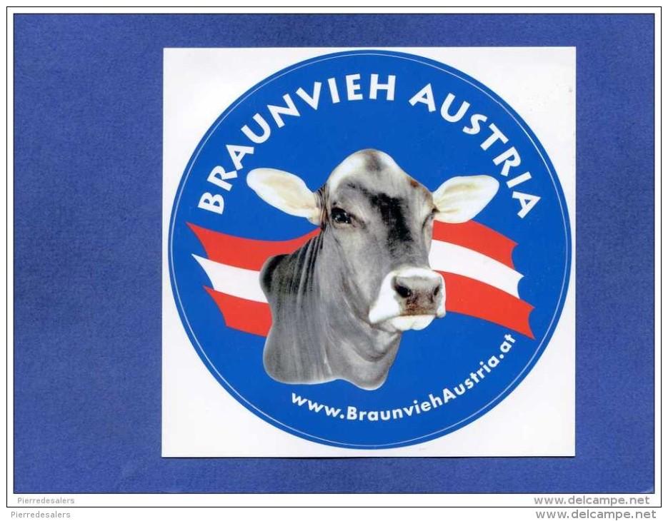 Autocollant - Autriche - Braunvieh Austria - Vache - élevage - Agriculture Publicité - Sticker - Autocollants