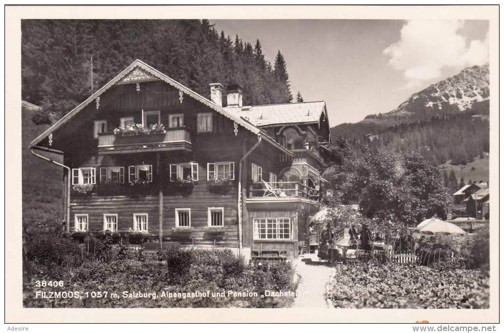 FILZMOOS In Salzburg, Alpengasthof Und Pension Dachstein, Fotokarte 1935?, Gute Erhaltung - Filzmoos
