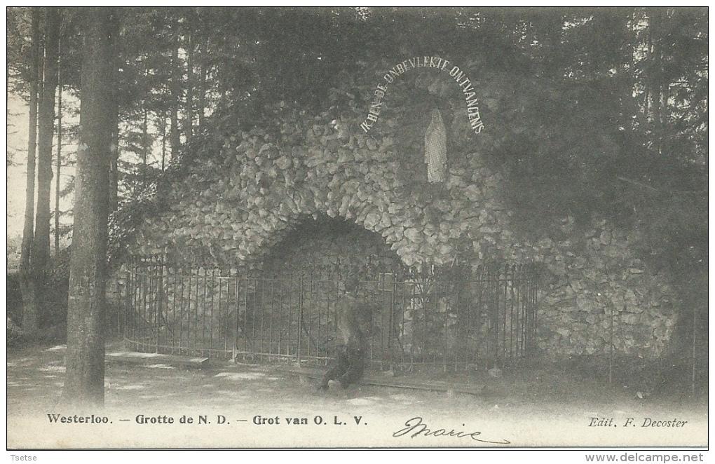 Westerloo - Grot Van O.V.L. - 1903 ( Verso Zien ) - Westerlo