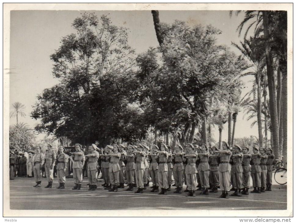 MILITARIA -  PHOTO Véritable - Prise D' Arme - Régiment De Chasseurs Alpins ? -  Photo Kynel  MARRAKECH - Guerre, Militaire