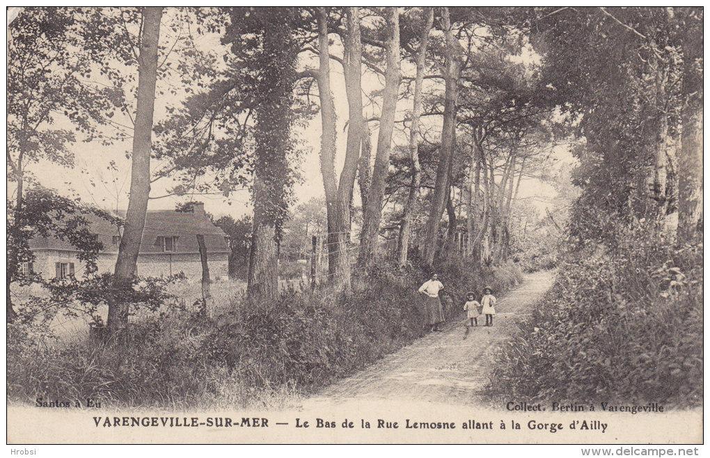 VARENGEVILLE SUR MER,  Lallée Rue Lemosne Allant à La Gorge D'Ailly, Circulée - Varengeville Sur Mer