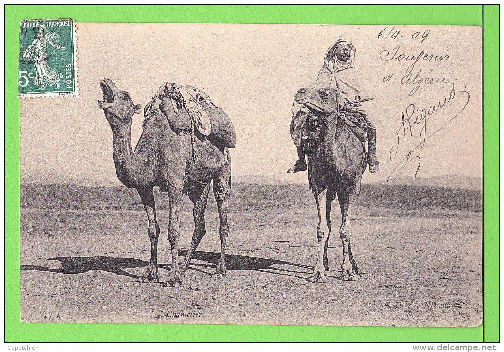 Chamelier En Algerie ..... / Carte écrite En 1909 - Professioni