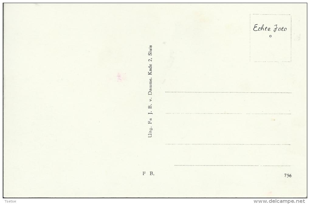 Sluis - Molen  ( Verso Zien ) - Sluis