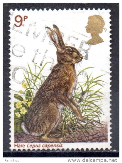 GREAT BRITAIN 1977 British Wildlife -  9p. - Brown Hare  FU - 1952-.... (Elisabetta II)