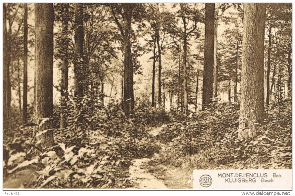 MONT-DE-L´ENCLUS  Bois - Mont-de-l'Enclus