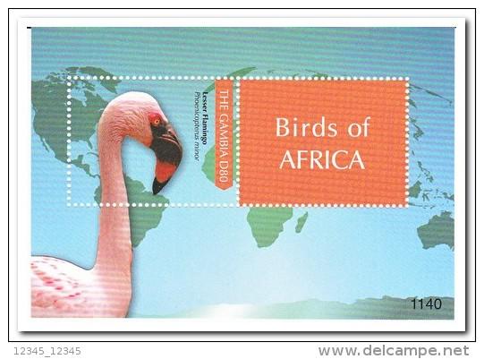 Gambia 2011 Postfris MNH, Birds - Gambia (1965-...)
