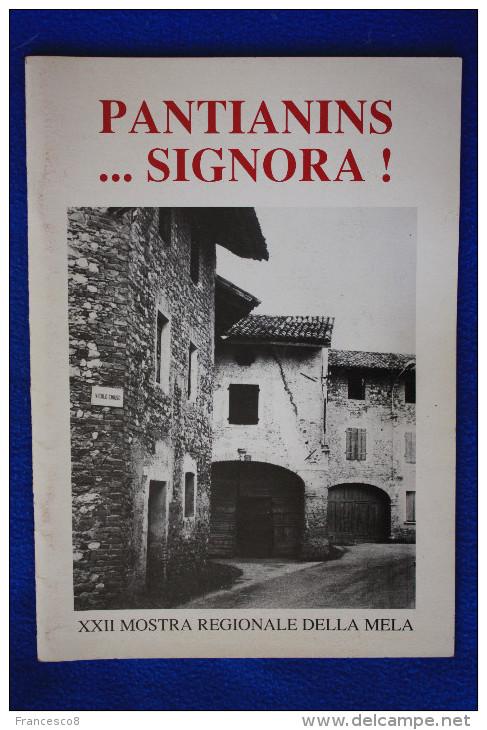 1991 PANTIANINS SIGNORA XXII MOSTRA REGIONALE DELLA MELA N° 1 - Pantianicco / Mereto Di Tomba - Autres