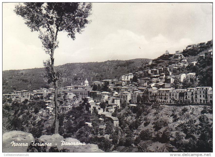 3-3178- Nocera Terinese - Panorama - Catanzaro - F.g. Viaggiata - Catanzaro