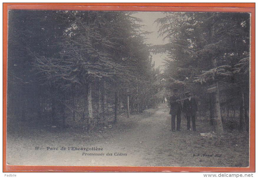 Carte Postale 21. Chenove  Parc De L´Escargotière  Promenade Des Cèdres Trés Beau Plan - Chenove