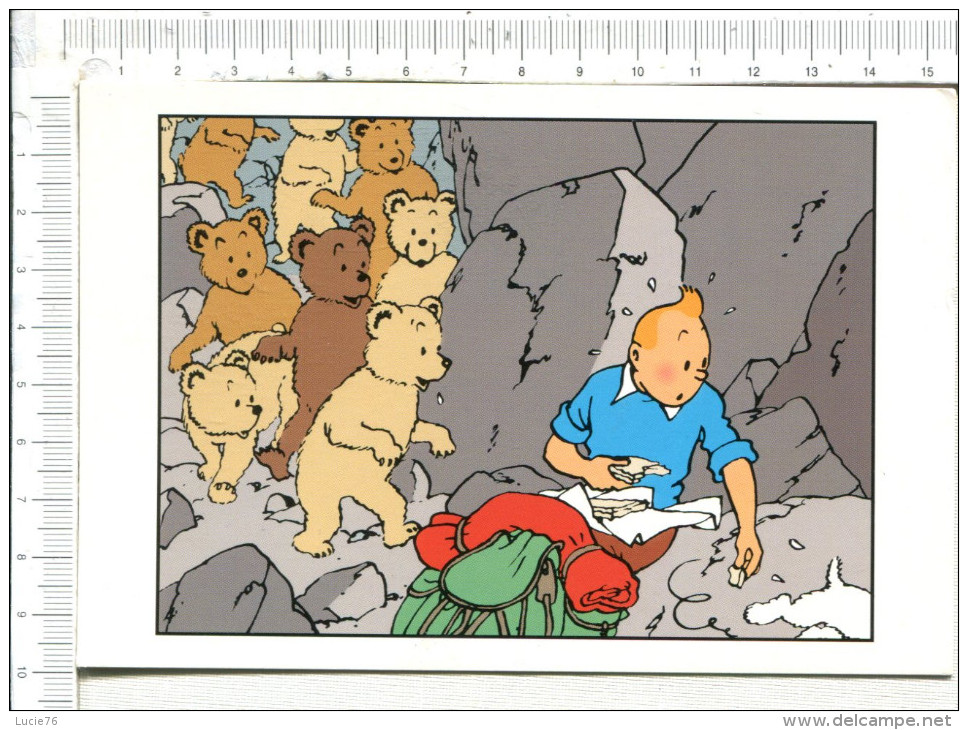 TINTIN  -  Hergé / Moulinsart - Bandes Dessinées