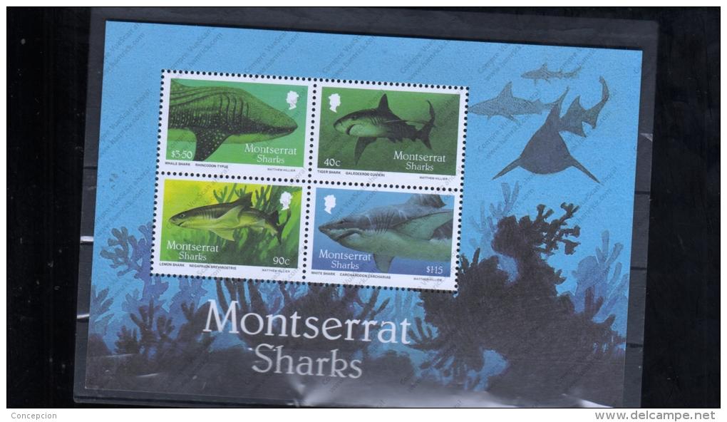MONSERRAT HB 40 - Fische