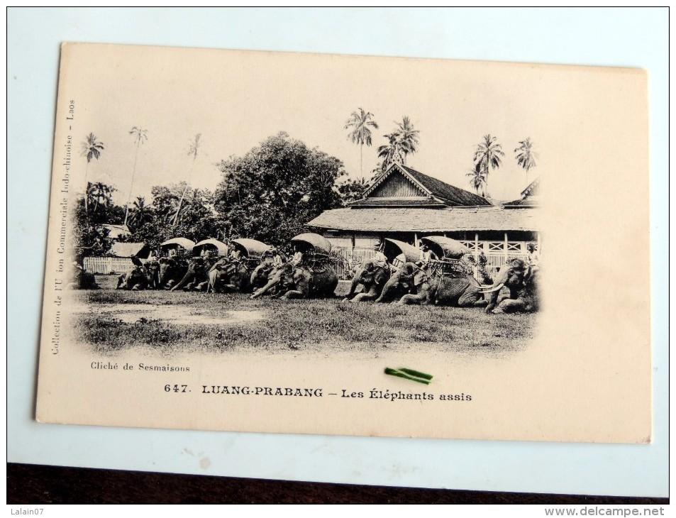 Carte Postale Ancienne : LAOS : LUANG-PRABANG : Les Eléphants Assis - Laos