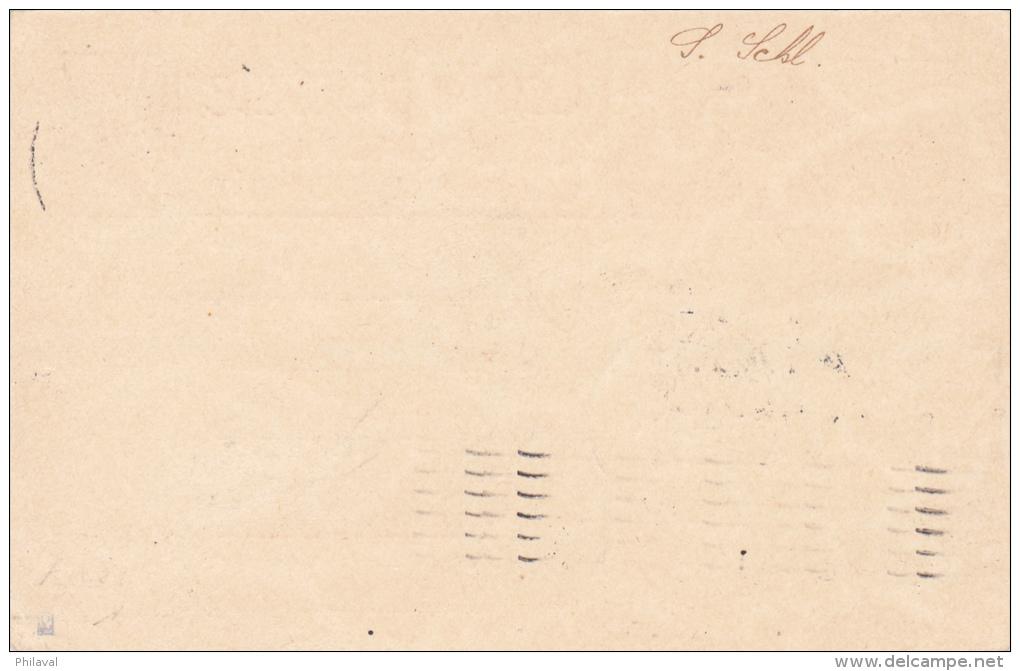 Entier Postal Avec Affranchissement Complémentaire Aviation -9.IX.1925 - Linéaire Zürich-Mailand - Autres Documents
