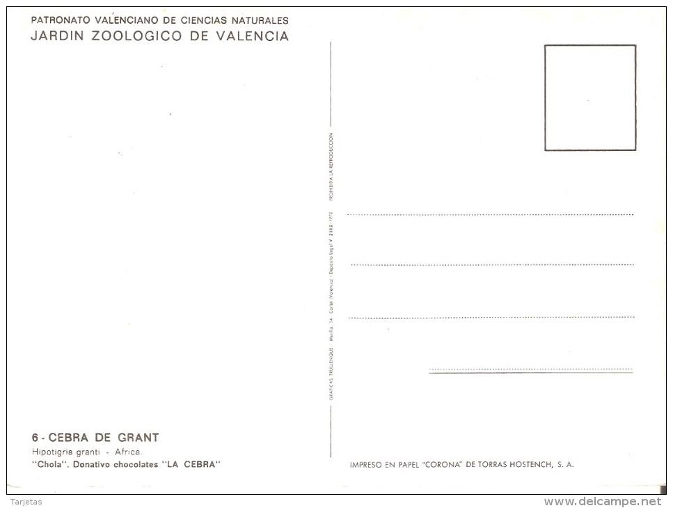POSTAL DE ESPAÑA CON UNA CEBRA EN EL ZOOLOGICO DE VALENCIA  (ZEBRA) - Cebras