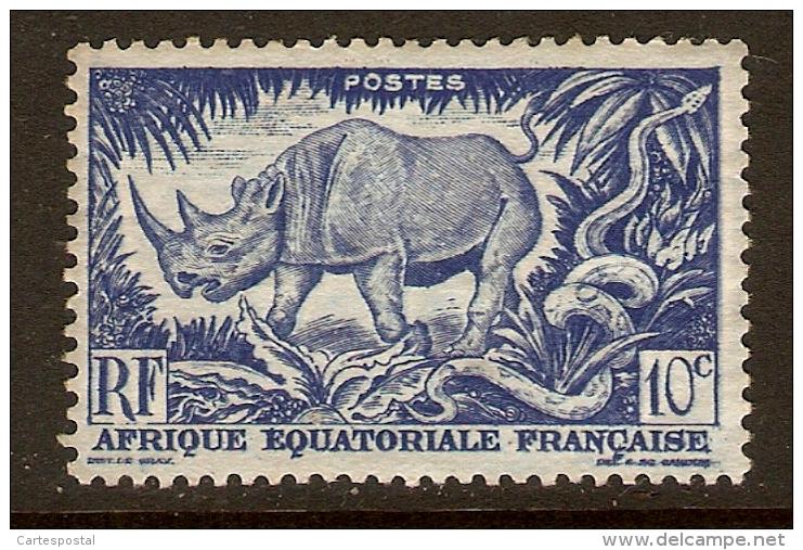 22 -  AFRIQUE  EQ; FR; + OCC; + Du SUD  ~~  Lot De 19  Timbres - Timbres