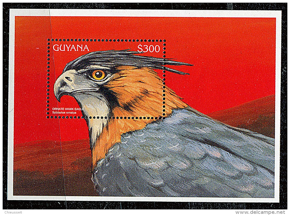 Guyane ** Bloc N° 242 - Oiseaux - Guyana (1966-...)