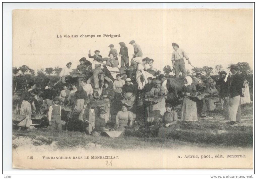 24 - La Vie Qux Champs En Périgord - Vendangeurs Dans Le Monbazillac - Non Classés