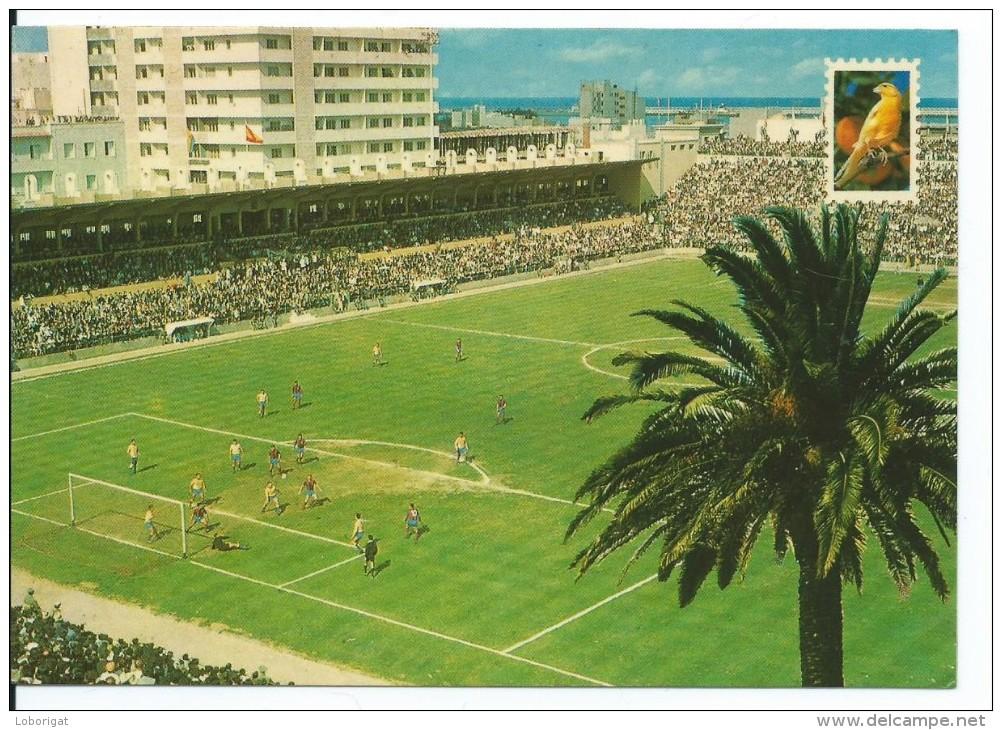 Viejo Estadio Old Stadium