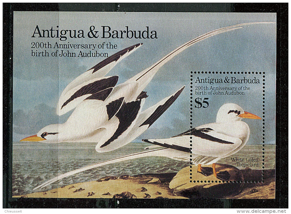 (CL 44 Bis) Antigua ** Bloc N° 91 - JJ Audubon,ornithologue. Oiseaux - Antigua And Barbuda (1981-...)