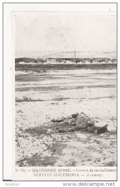 MACEDOINE SERBE 637 CONVOI DE RAVITAILLEMENT  1916 - Serbie