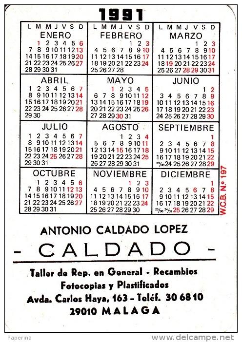 CALENDARIETTO 1991 A. CALDADO LOPEZ IN LINGUA SPAGNOLA - Calendari