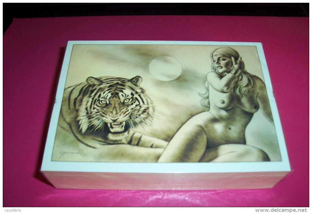 EMILE  MUSTACCHI  °  REF No 036  ARTISTE PEINTRE CATALAN - Illustrateurs & Photographes