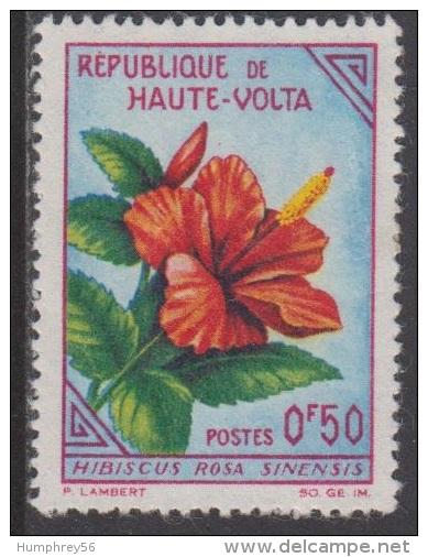 1963 - HAUTE-VOLTA - Y&T 113 - Hibiscus Rosa-sinensis (*/MH) - Haute-Volta (1958-1984)