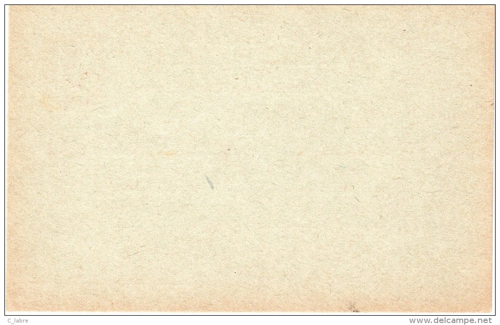 ENTIER POSTAL : INDOCHINE . 1924/25 . CP N°16 . ACEP . NEUVE . TB . - Briefe U. Dokumente