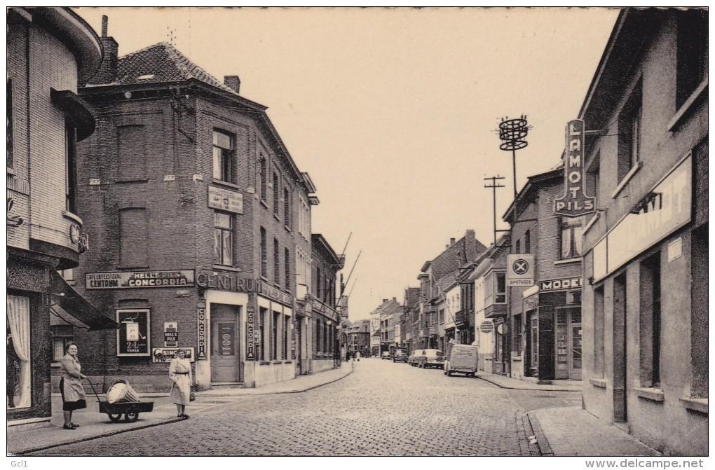 Niel - Antwerpsestraat - Niel
