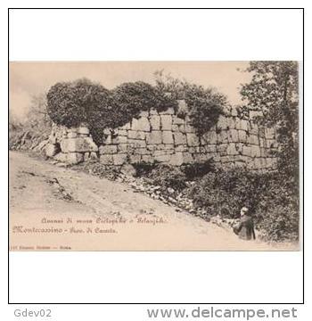 ITLATP1305C--LFTD145TFPA. TARJETA POSTAL DE ITALIA.Camino De,ROMA.Montecasino.Piedras De Alguna Ruina Antigua - Flores, Plantas & Arboles