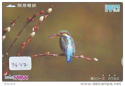 Telecarte Japon OISEAU (3647) MARTIN PECHEUR * KINGFISHER  * Phonecard Japan * BIRD * TK EISVOGEL - Birds
