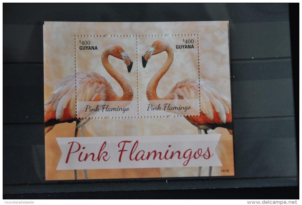 N 201 ++ GUYANA 2014 BIRDS OISEAUX VOGELS PINK FLAMINGOS MNH ** - Guyana (1966-...)