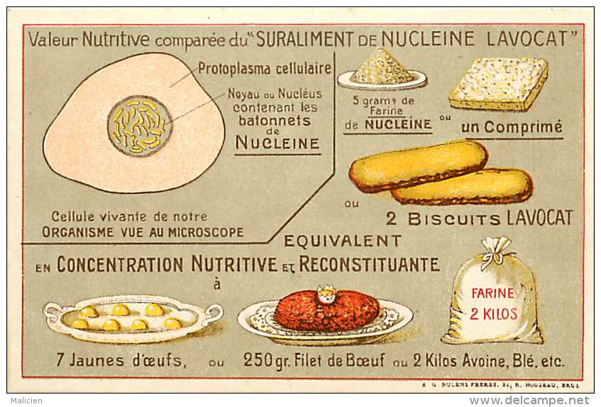 Themes Div-ref H853- Culinaire -gastronomie - Valeur Nutritive Comparée Du Suraliment Du Nucleine Lavocat  - - Publicité