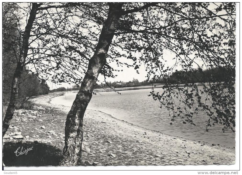 BESSINES (Hte-Vienne) - Le Lac De Sagnat - Bessines Sur Gartempe