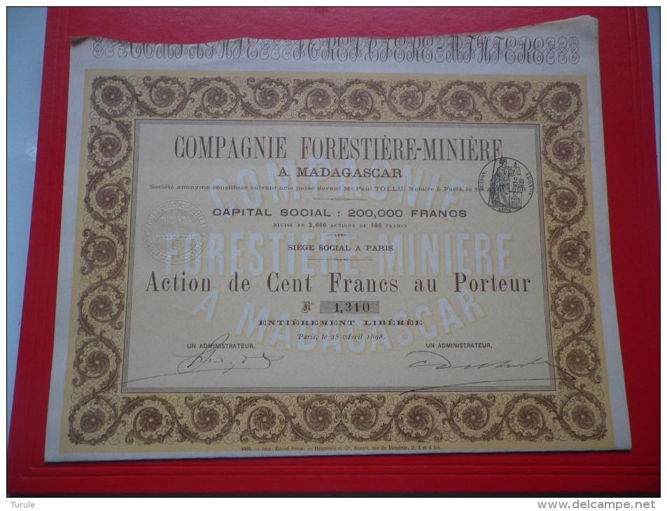 Compagnie Forestière Minière A Madagascar (100 Francs) 1898 - Shareholdings