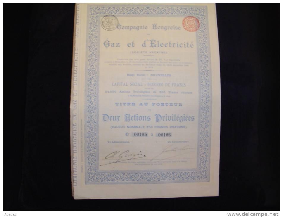 """Titre De 2 Actions Privilégiées""""Cie Hongroise Gaz Et Electricité""""Bruxelles 1896 Très Bon état,avec Tous Les Coupons - Electricité & Gaz"""