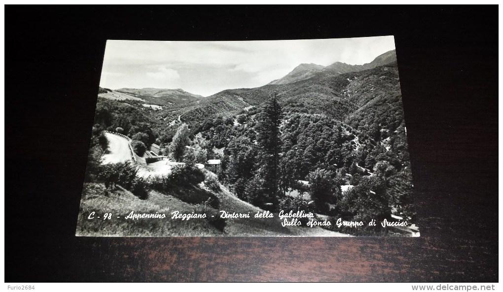 C-18673 CARTOLINA APPENNINO REGGIANO - DINTORNI DELLA GABELLINA - SULLO SFONDO GRUPPO DI SUCCISO - PANORAMA - Reggio Nell'Emilia