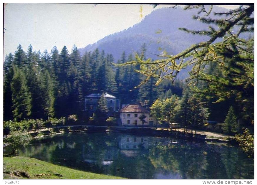 Albergo Ristorante - Lago Laux - Formato Grande Non Viaggiata - Hotels & Restaurants