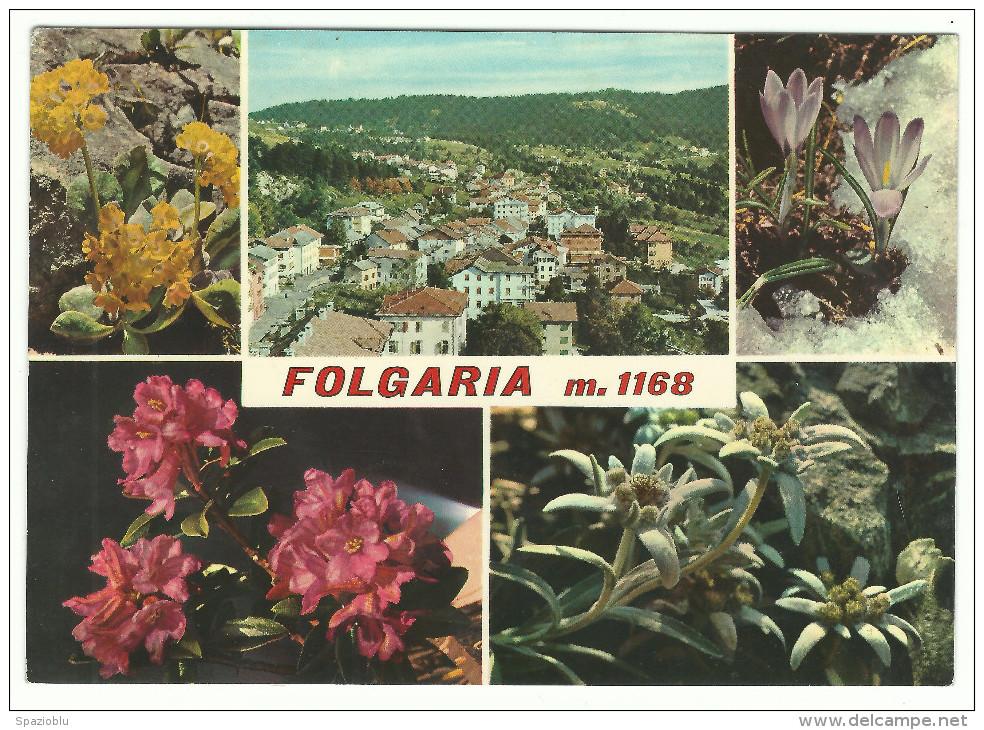 "1970, ""Folgaria"" (Trento) - Vedutine - Fiori. - Trento"