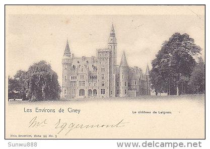 Les Environs De Ciney - Le Château De Leignon (Nels, Précurseur) - Ciney