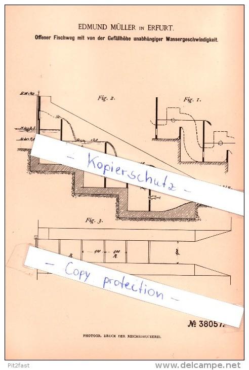 Original Patent  - Edmund Müller In Erfurt , 1886 , Offener Fischweg , Fischerei , Fischzucht , Fisch !!! - Historische Dokumente