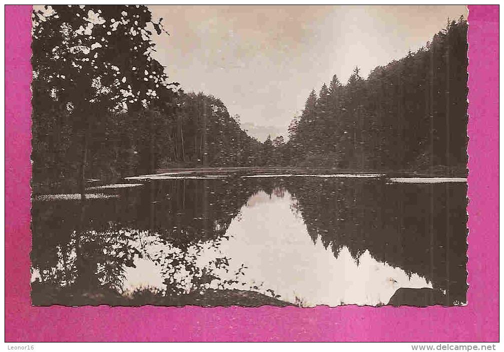 REMIREMONT  -  ** ETANG DE HUCHERE **   -   Editeur : LA CIGOGNE De Strasbourg  - N° 88.383.46 Ou 3749 B - Remiremont