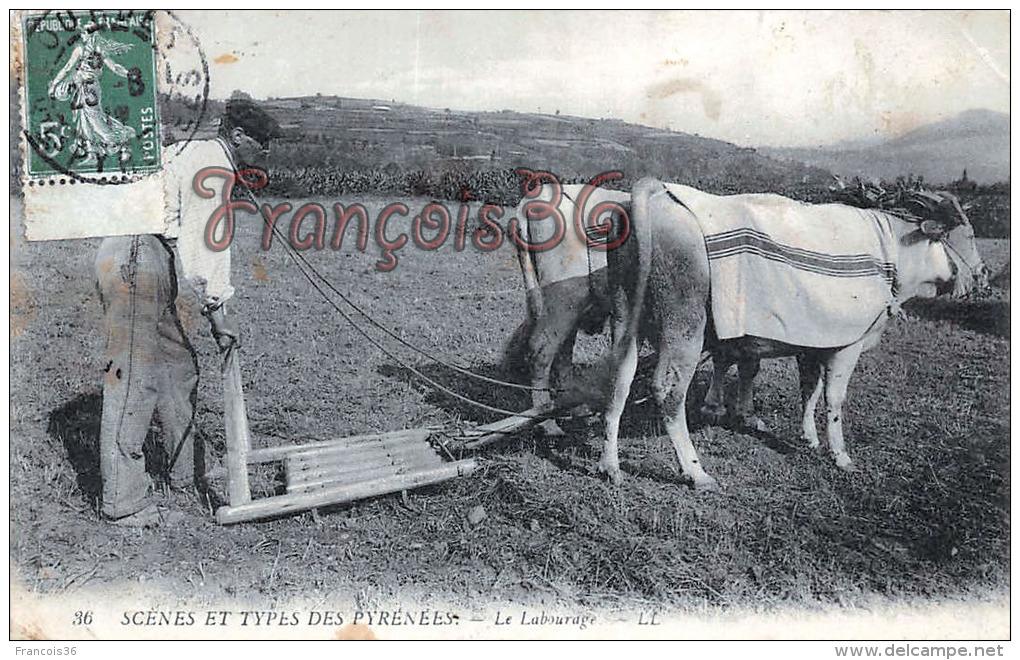 (64) Scènes Et Types Des Pyrénées -  Le Labourage - Attelage - Boeufs - Paysans - Paysan - 2 SCANS - Non Classés
