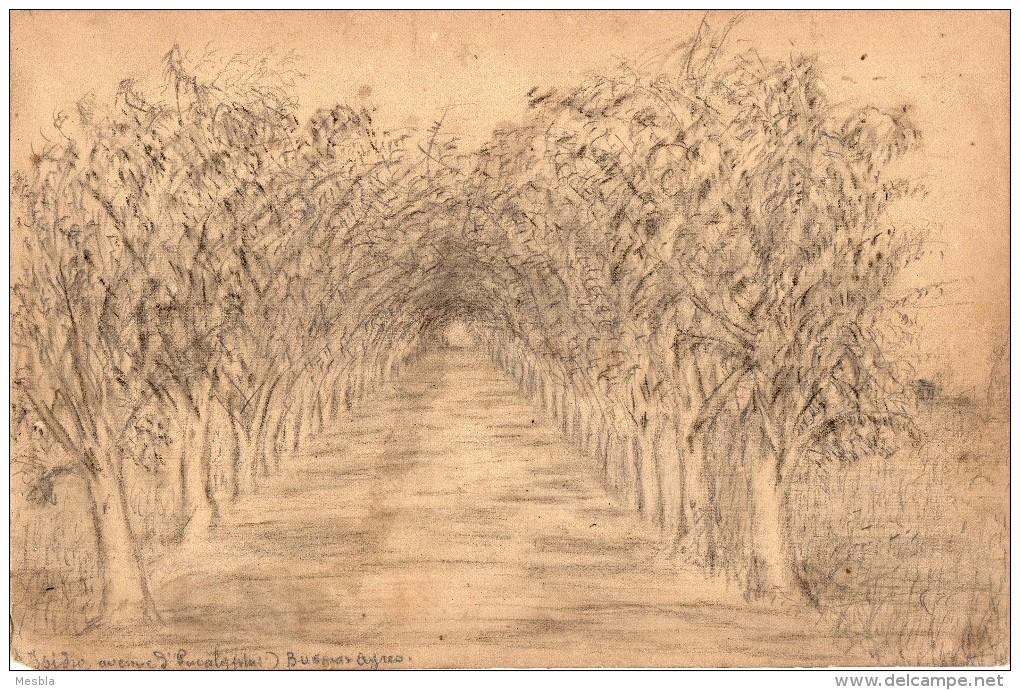 Dessin - Isidro,  Avenue D' Eucalyptus - Buenos Ayres  ( Buenos Aires)  Dessin Provenant D'un Cahier De Dessin De 1883 - Vieux Papiers