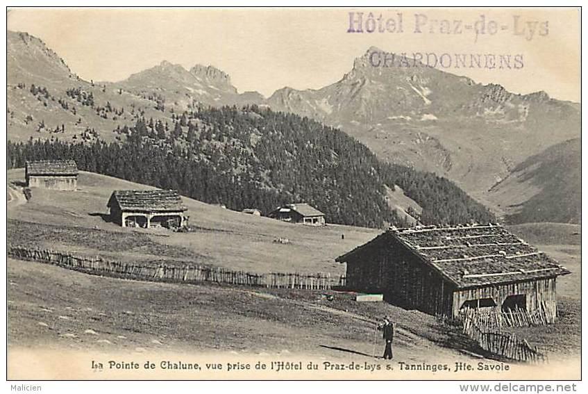 Dept Div- Haute Savoie - Ref W244 -  La Pointe De Chalune - Vue Prise Du Praz De Lys - Hotel S. Tanninges - - Otros Municipios