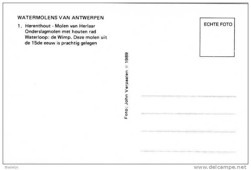 HERENTHOUT (Antw.) - Molen/moulin - De Watermolen Met Overdekt Houten Onderslagrad In 1989. Mooie Kaart! - Herenthout