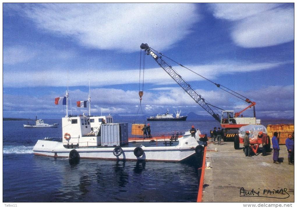 Lot De 6 Cartes - Terres Australes Et Antartiques - Photo De Fatras - Cormoran Kerguelen -Moutons - Renne - Albatros - TAAF : Terres Australes Antarctiques Françaises