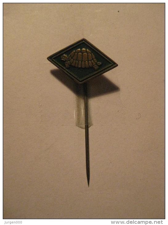 Pin Schildpad (GA05387) - Animaux