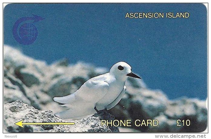 Ascension Isl. - Fairy Tern, 2CASB, 1992, 4.997ex, Used - Ascension (Ile De L')